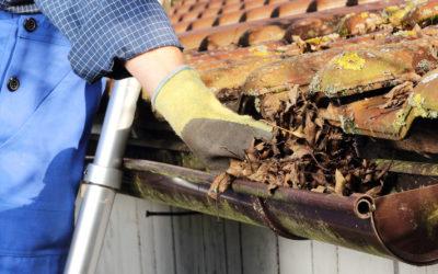 Comment bien nettoyer et entretenir sa toiture ?